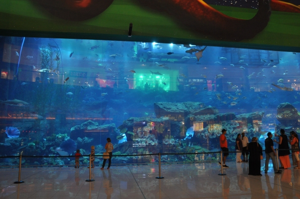 Aquarium geant au Mall of the Emirates. Photo : Coline Herbomel-Ringa.